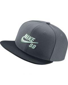 Nike Snapback Cap (Grey)