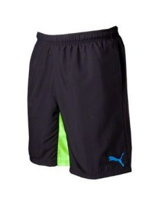 Puma Evo Speed Shorts
