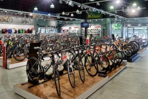 different-bicycle-price-points-bike-shop