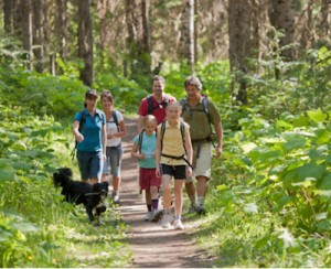 Hiking Is A Great Summer Activity Woodland Trail