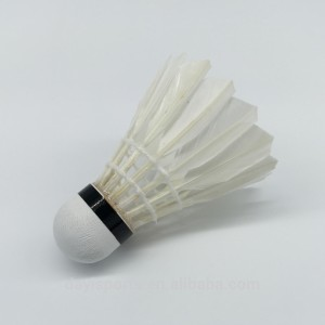 perfect-christmas-gift-for-a-badminton-player-shuttlecocks