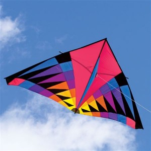 why-spring-is-perfect-for-families-to-fly-a-kite-delta