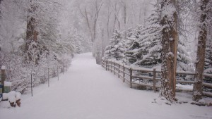 Winterproofing Your Exercise Routine Snow