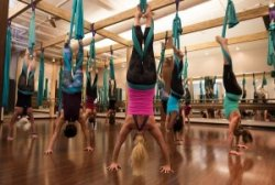 2016 exercise class trends aerial yoga