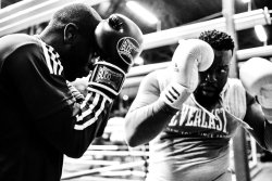 Boxing Workout Drills Gloves