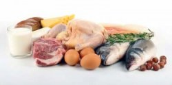diet of a professional rugby player protein