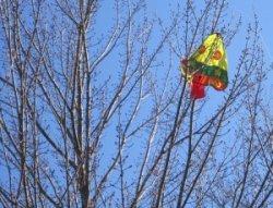 fly a kite stuck