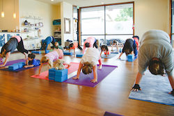Growth of Family Fitness Class