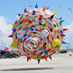 Guinness World Records for Kite Flying Size