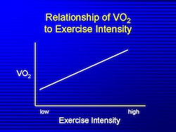 High VS Low Intensity Training VO2 Max