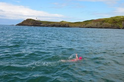 What do swimmers do for a challenge north channel